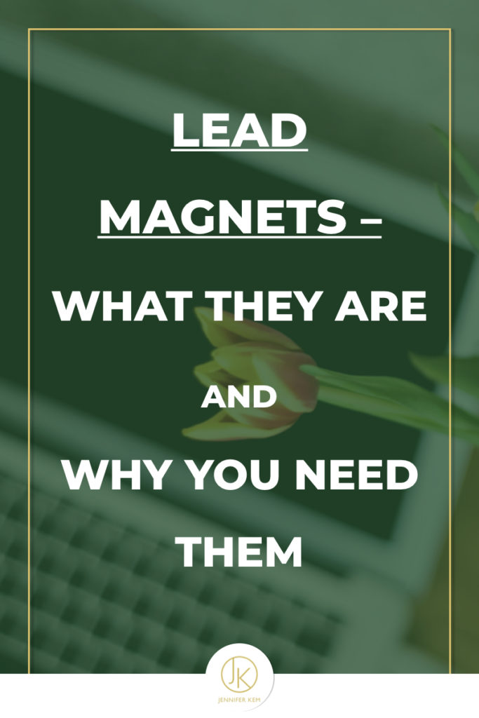 Lead Magnets – What They Are And Why You Need One.001